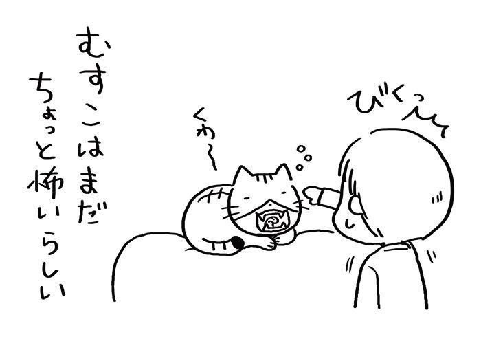 ねこと暮らし02