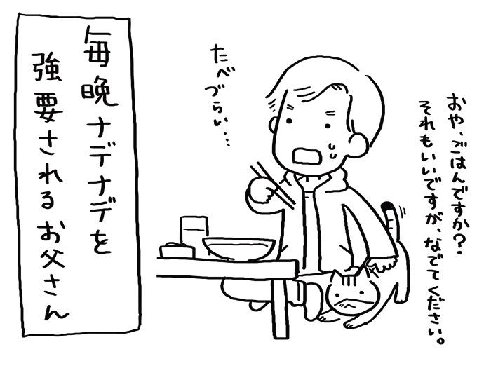 ねこと暮らし03
